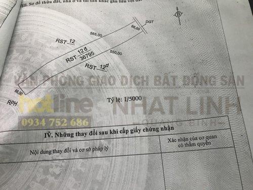 Bán 3.6ha đất rừng, cách biển Hải Ninh chỉ 750m, thương lượng trực tiếp chính chủ